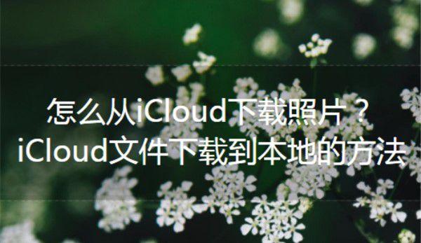 怎么从iCloud下载照片